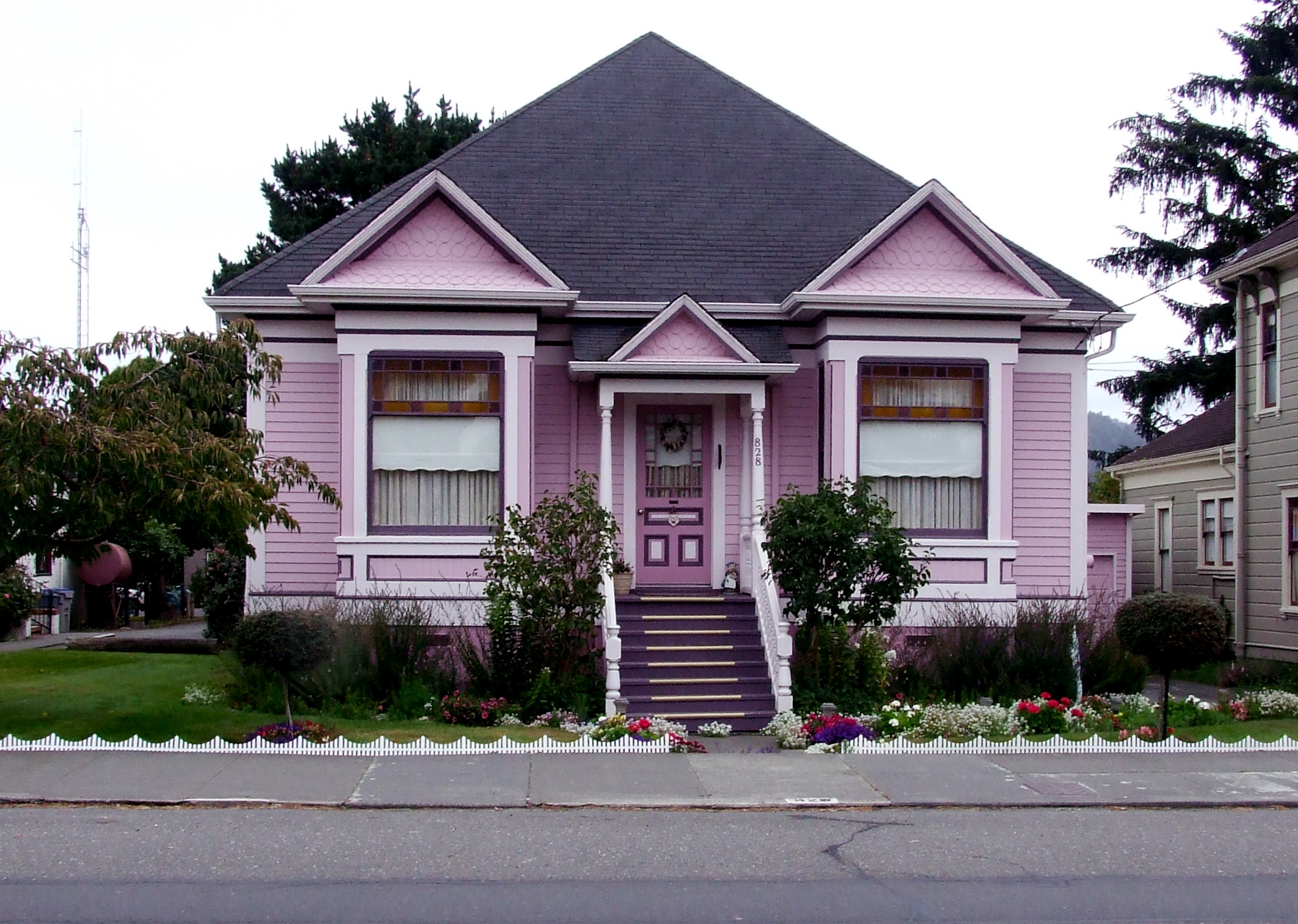 Some With More Pink Blue In It But They All Did My Heart Good I Will Forever Smile When See A Purple Or House